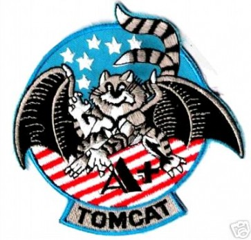 Navy F-14 Tomcat Patch, U.S. Navy Patches