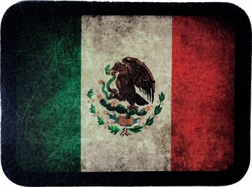 Worn In Distressed Green Red & White Mexican Flag Genuine Leather Patch