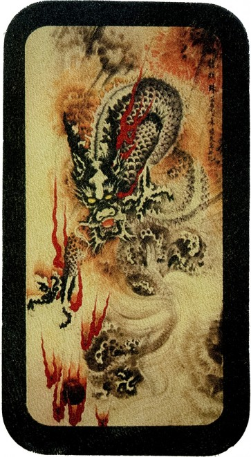 Grey Smokey Dragon With Fire Genuine Leather Patch