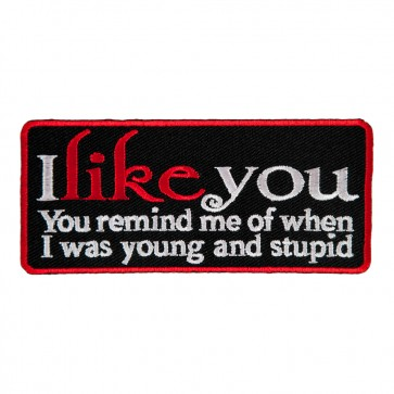 I Like You You Remind Me Of When I Was Young And Stupid Embroidered Patch