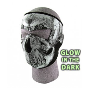 Glow In The Dark Skull Full Face Mask