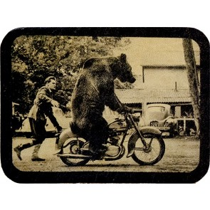Black And White Portrait Of Bear On A Motorcycle Genuine Leather Patch