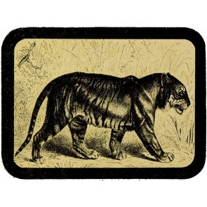 Black And White Walking Bengal Tiger Sketch Genuine Leather Patch