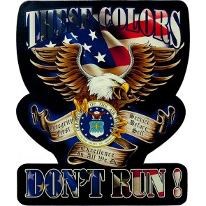 Red White & Blue These Colors Don't Run US Air Force Eagle Genuine Leather Sew On Patch